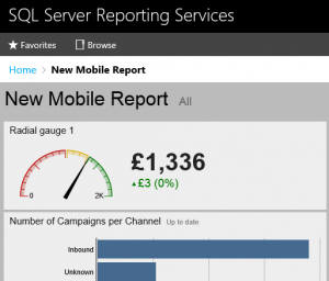 SSRS Mobile Report